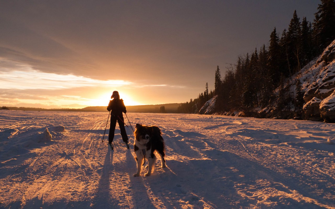 My wife and dog skijoring on the frozen Tanana River